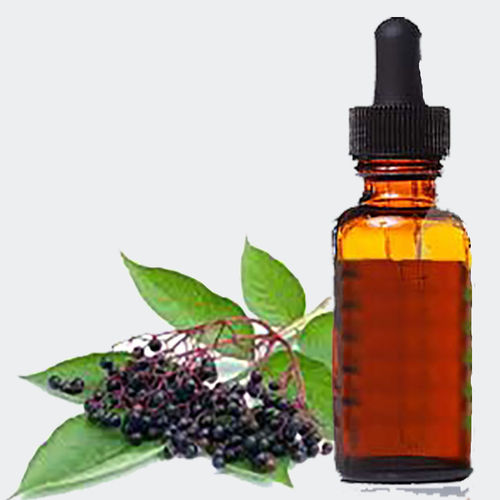 Elderberry, Sambucus extract 1:1