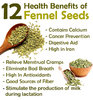 Fennel Seeds Organic