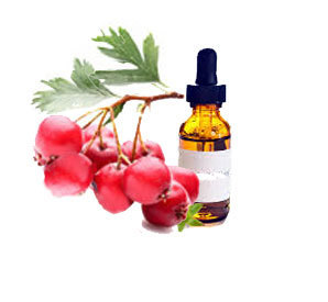 Crataegus Homeopathic Tincture
