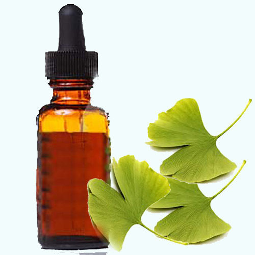 Gingko leaf extract 1:1