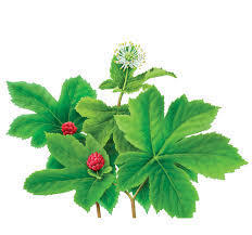 Goldenseal root extract 1:2