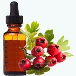 Hawthorn berry extract 1:1