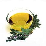 Castor Oil, Organic, Cold-pressed
