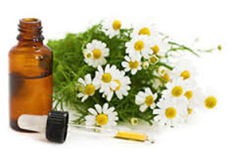 Roman Chamomile Essential Oil 10ml 3% in jojoba
