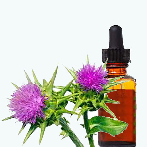 St Mary's thistle extract 1:1