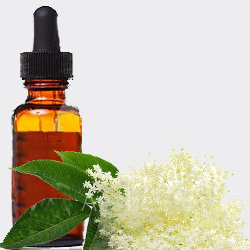Elder flower, Sambucus extract 1:1
