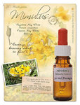 Mimulus Flower Remedy